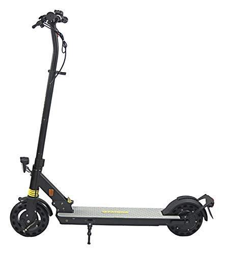 PATONA E-Scooter mit Straßenzulassung - 20 km/h - 250 W Motor - 20 km Reichweite - klappbar -...