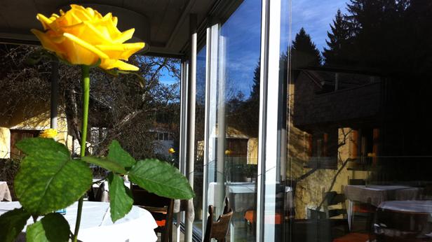 Ausflug Mühltalhof Blume