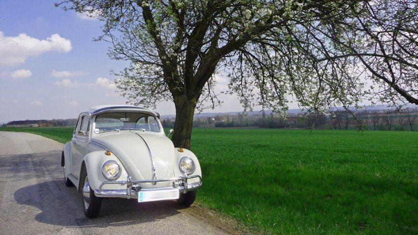 VW 117