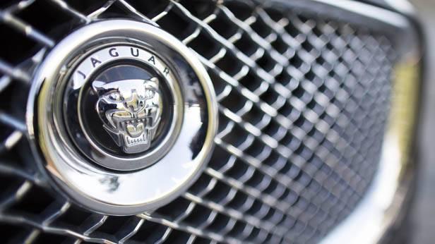 Das Jaguar Logo auf einem Kühlergrill