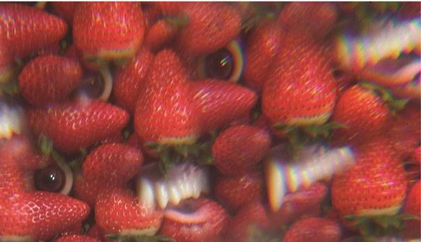 Mhh, süße Erdbeeren.. aber huch, was ist das?!