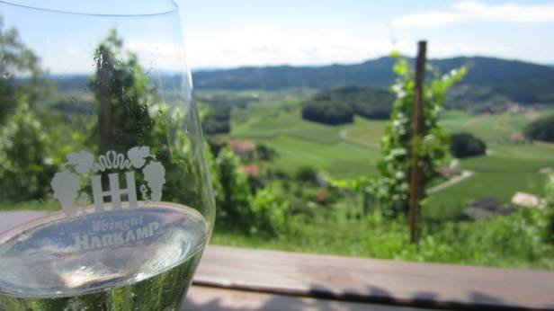 Blick vom Weingut Harkamp auf die Landschaft