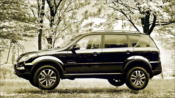 ssanyong Rexton W 2,0 Xdi 4WD Plus seitlich schwebend