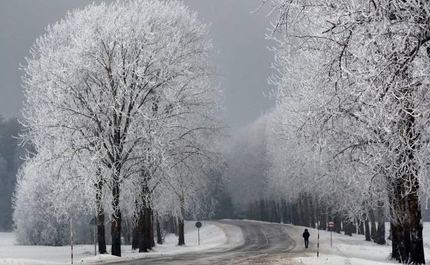 © Bild: Tatyana Zenkovich / EPA / picturedesk.com