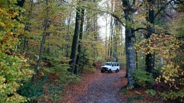 _Land-Rover-Defender-LXV-wald-front3