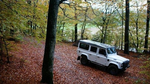 _Land-Rover-Defender-LXV-wald-seitlich