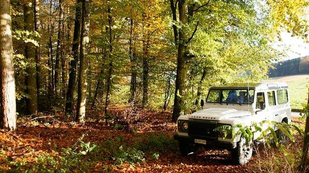Der Land Rover Defender LXV im Wald