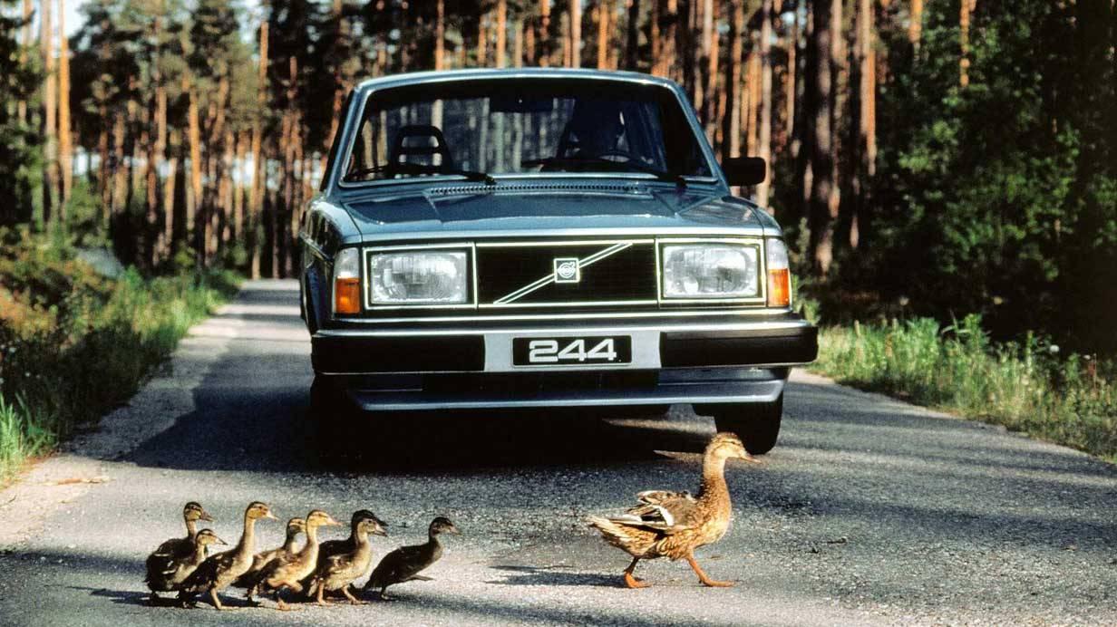 Der Volvo 244 aus dem Jahr 1980