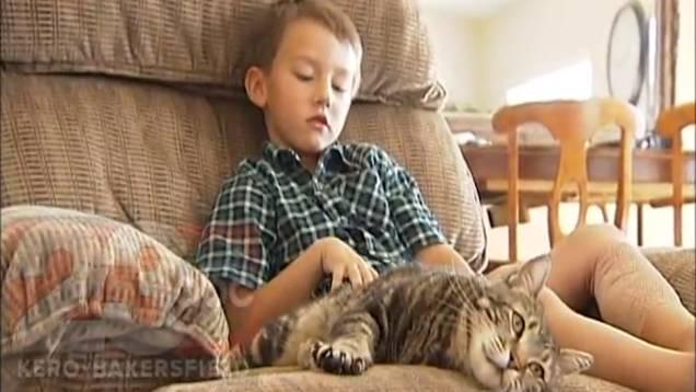 _tara katze rettet kind vor hund