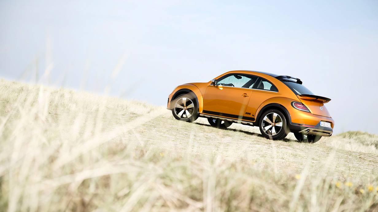 _Beetle Dune Sylt 8