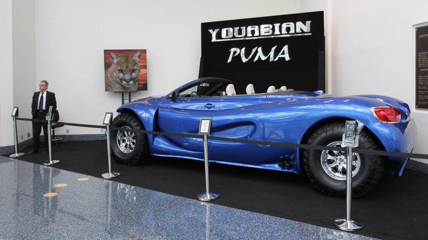 Puma Youabian