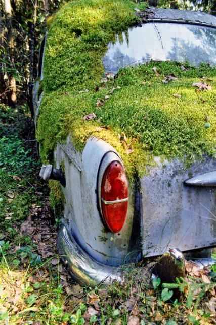 _1957 Fiat 1100-103D 11046-19