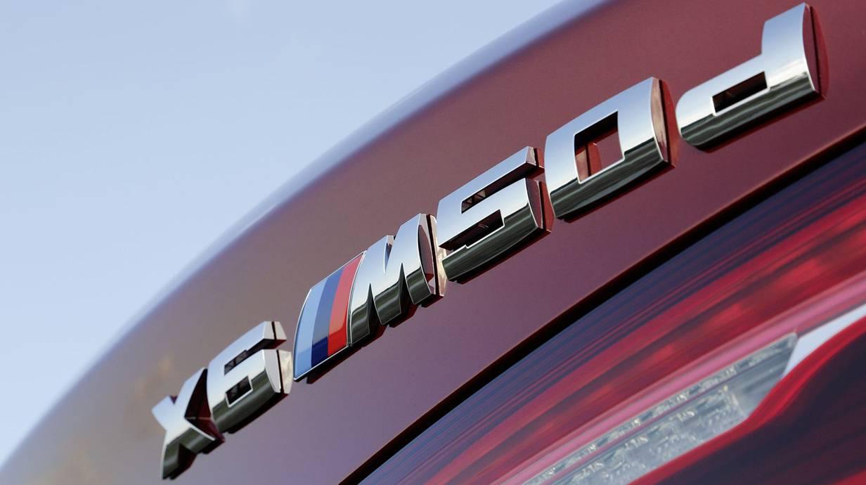 _BMW X6 (14)