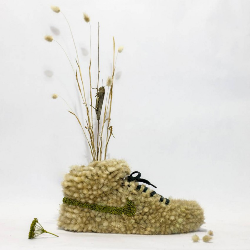 15-Nikes-taken-by-plants-Christophe-guinet-1