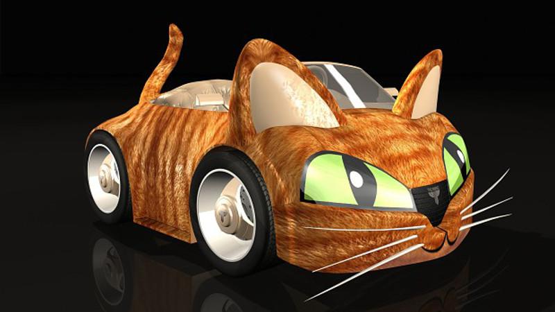 wincars cat