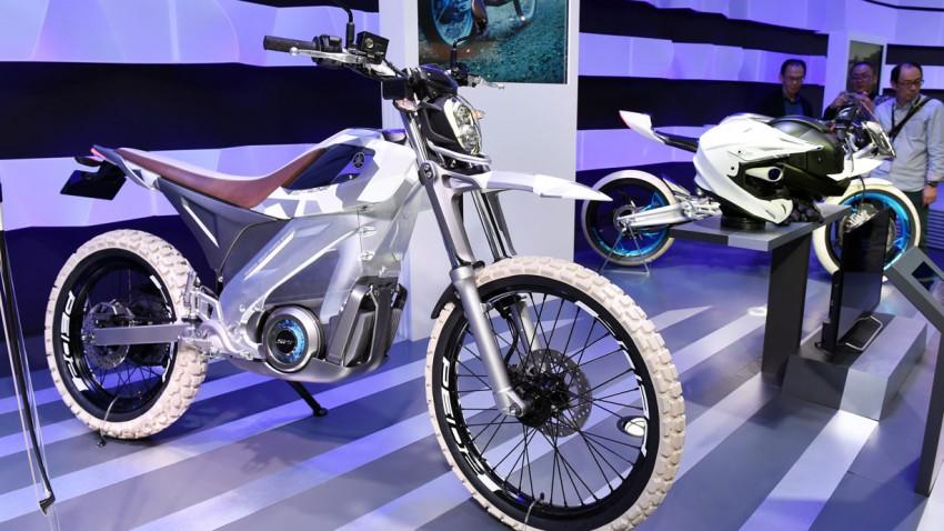 Bonsai-, Elektro- und Hybrid-Bikes in Tokyo