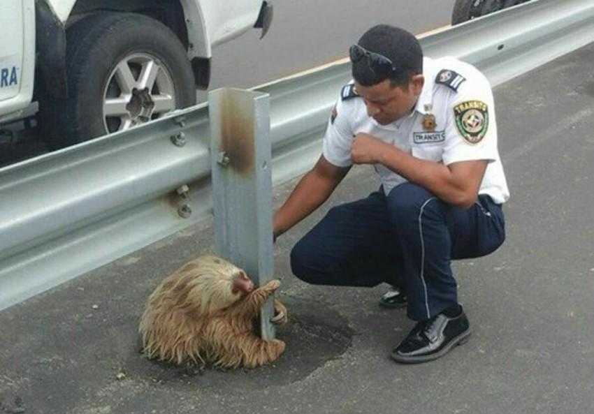 Nette polizisten kennenlernen