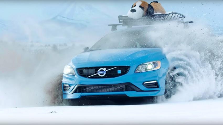 Volvo V60 Polestar - Artgerechte Haltung in Schweden