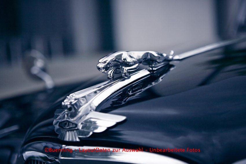 Jaguar MKVII M 1956 4