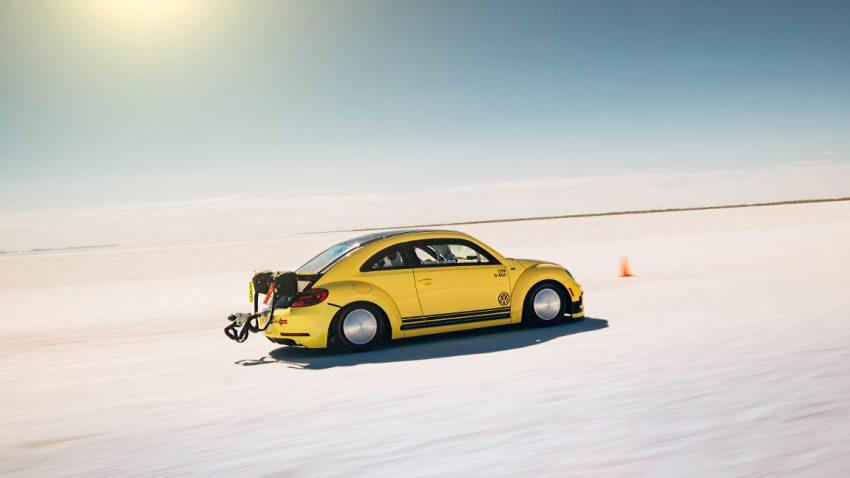 beetle-lsr-2