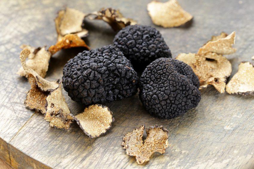 vms-umbria-truffles
