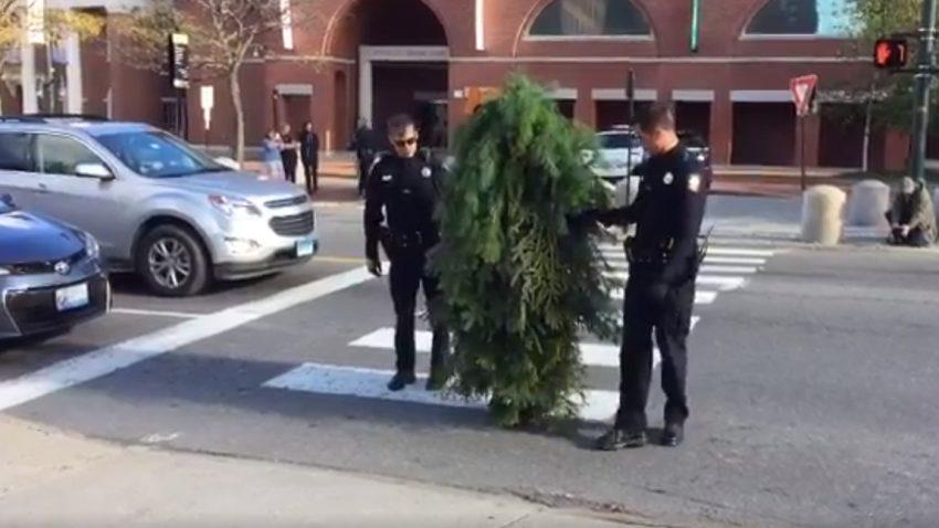 Als Baum verkleideter Mann wegen Verkehrsbehinderung verhaftet