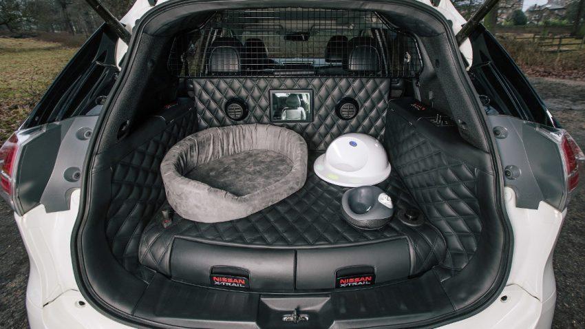 ein auto f r den hund nissan x trail studie 4dogs. Black Bedroom Furniture Sets. Home Design Ideas
