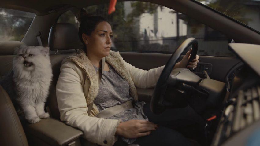 Diese selbstgedrehte Autowerbung brachte einem Amerikaner 20.000 Dollar für einen alten Honda