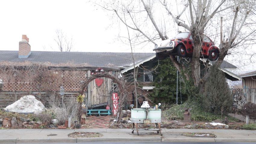 Wie kam dieser VW Käfer in den Baum einer älteren Dame - und warum muss er wieder verschwinden?