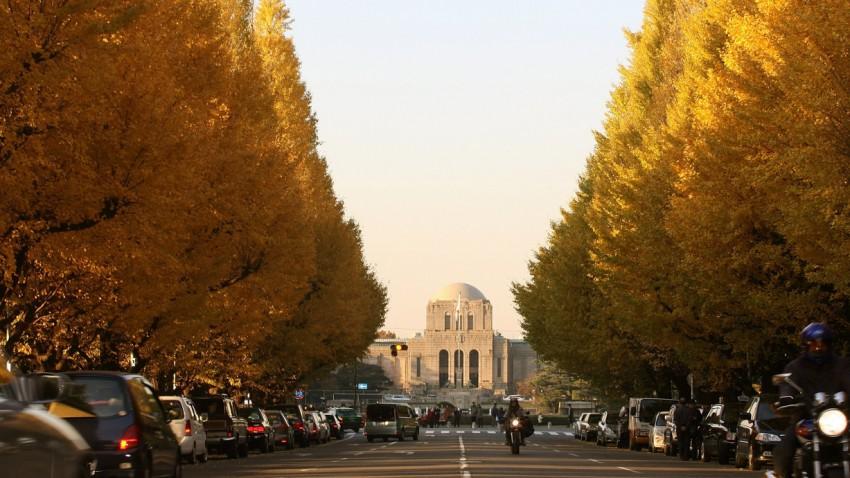 Autofahren in Japan: Das ist zu beachten