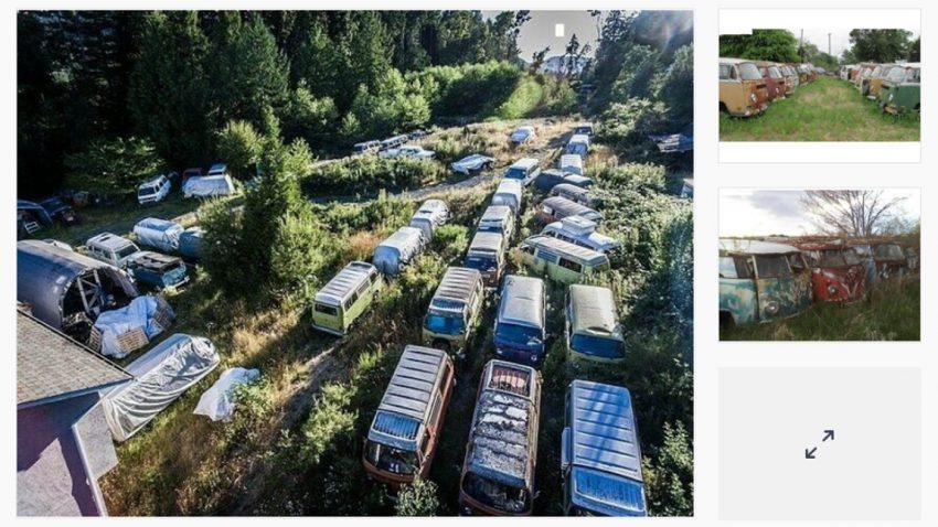 Kanadier verkauft 55 alte VW-Busse - aber nur im Paket