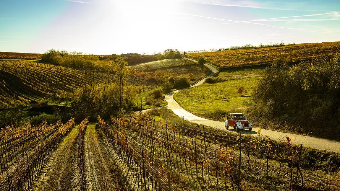 Eine Pilgerlustreise: Durchs Weinviertel im Citroën 2CV
