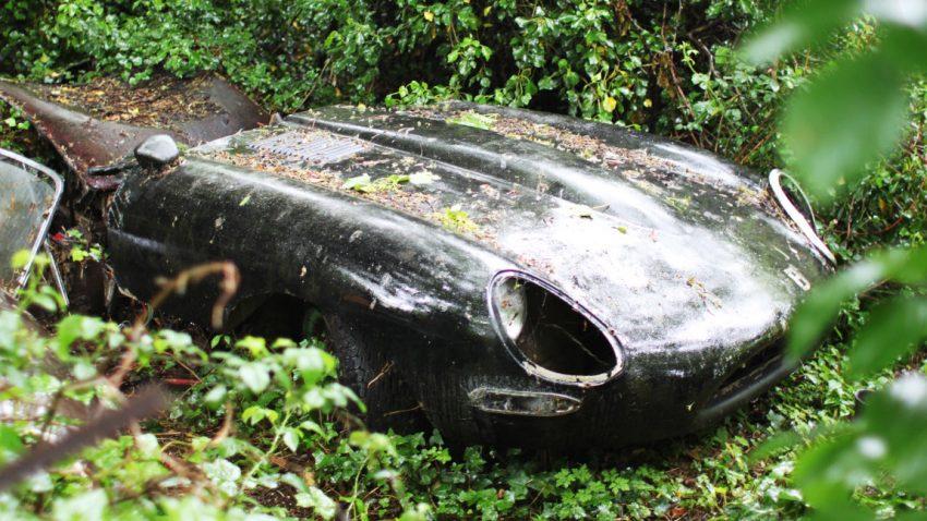 Vom Gestrüpp in die Garage: Die Geschichte eines verwilderten Jaguar E-Types