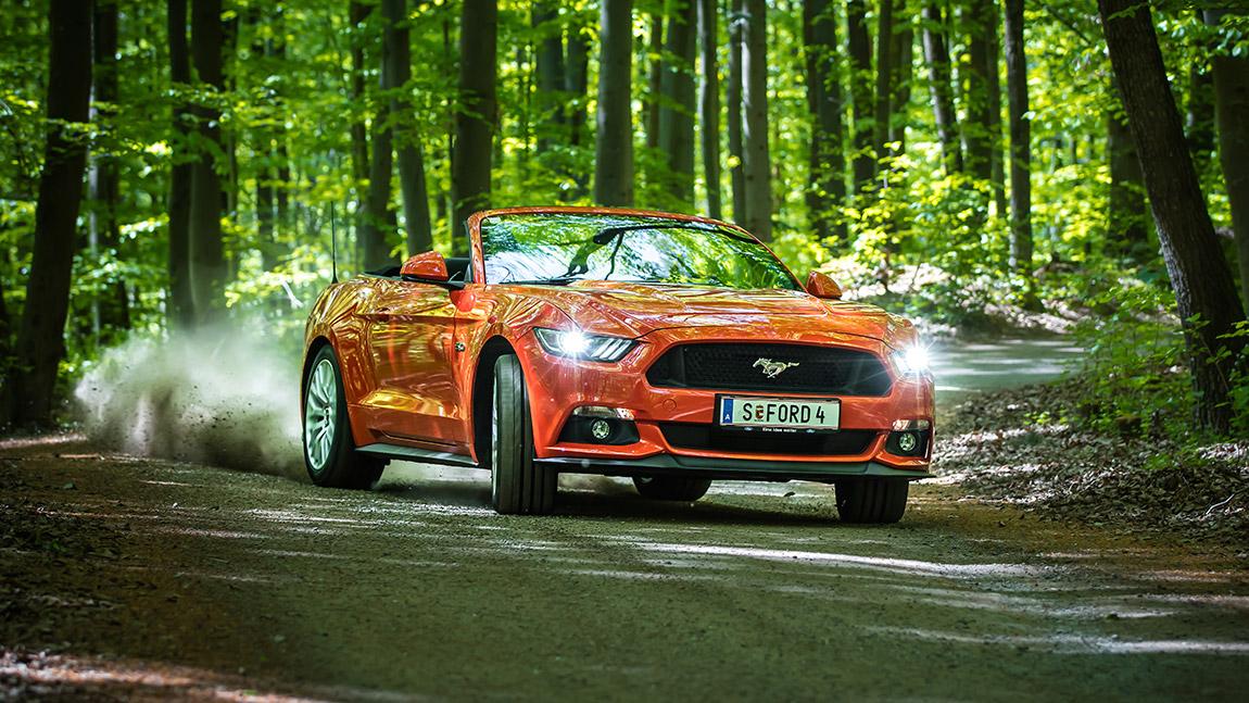 Ford-Fanartikel und Zubehör für wahre Fans