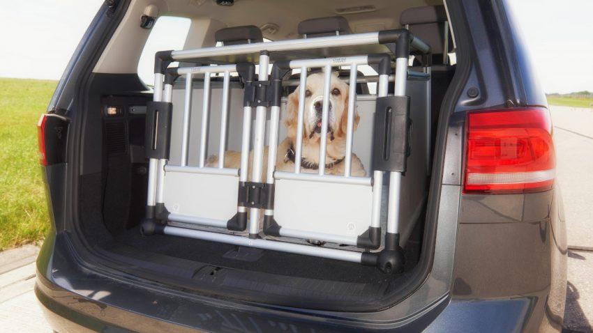 Hundebox & Co: Worauf man bei der Sicherung von Tieren im Auto achten muss [+ Crashtest]